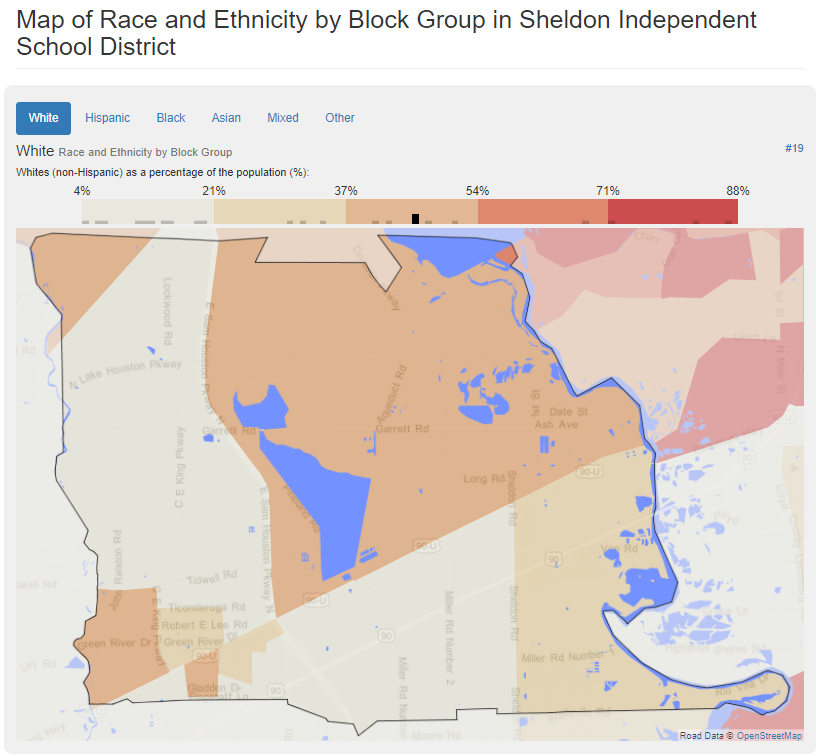 Race and Ethnicity by Block Group